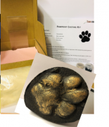 Thonk Forensic paw print Kit