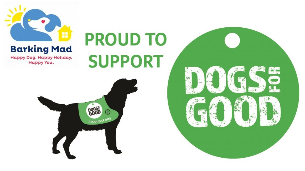 Barking Mad are proud to support Dogs for Good's Dogtober campaign