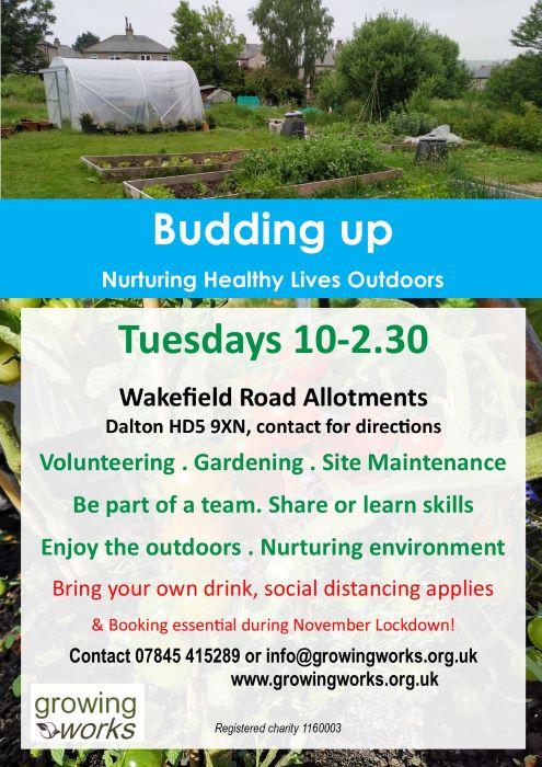 Wakefield Rd allotments volunteering sessions